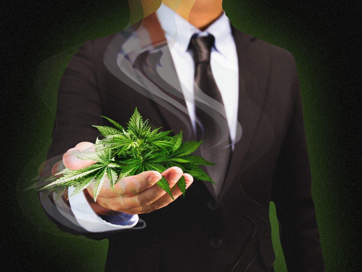 cannabis suit vc